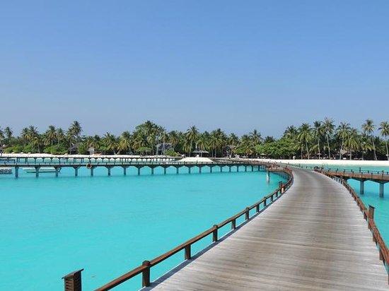 The Sun Siyam Iru Fushi Maldives : The landing.