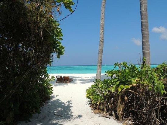 The Sun Siyam Iru Fushi Maldives : View from our villa.