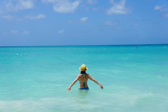 Manchebo Beach Resort & Spa: Yes, the water really is that blue