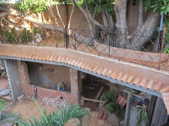 Casa OsmaryAlberto: building around a tree