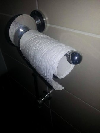 Wellington Hotel: million pieces of toilet roll to do a family of 3