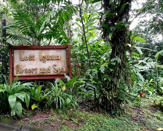 Lost Iguana Resort & Spa: Hotel
