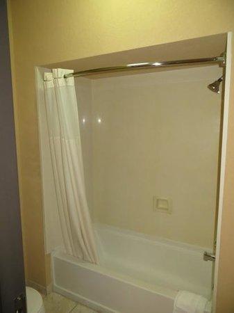 Comfort Inn & Suites: Shower/tub, room 300