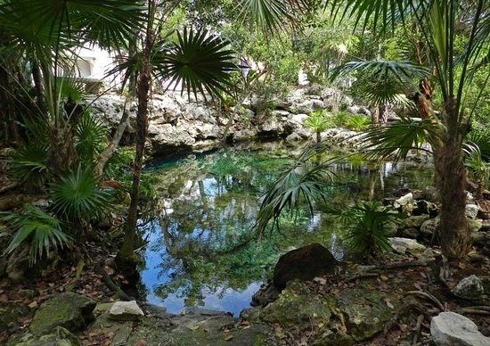 """Chan Chemuyil Vacation Rental: The local """"Cenote"""", a 3-min walk from Casa Marbella."""