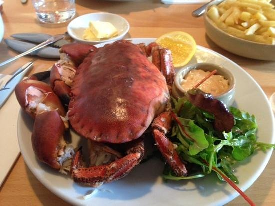 Blackfriars Restaurant: brown crab, was today an extra choice for the lunch menu