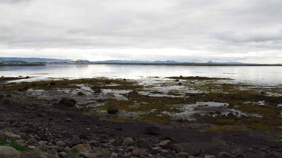Reykjavik Bike Tours : On a rest stop along the coast