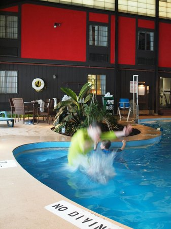 Fireside Inn & Suites: Pool