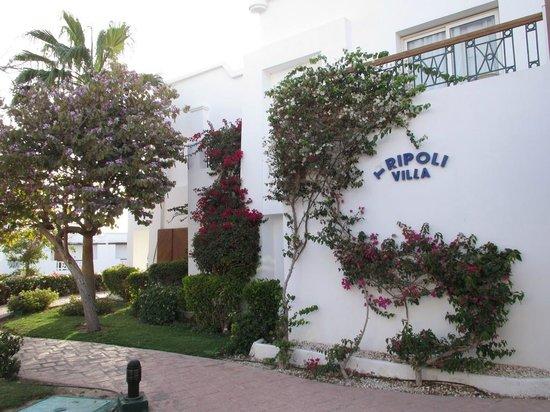 Melia Sinai: отель нуждается в ремонте
