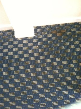 Econolodge Oceanblock: Carpet
