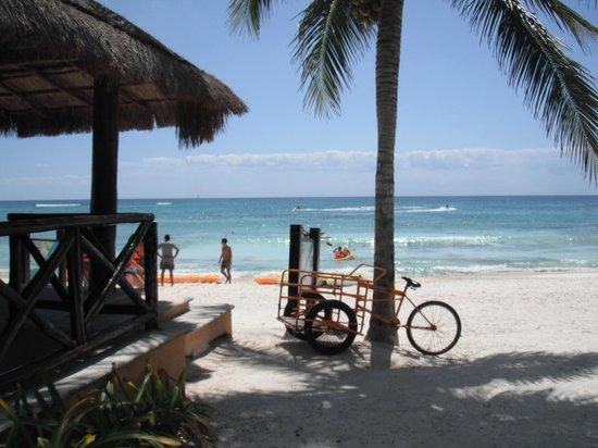 Barcelo Maya Caribe : Beach near water sports centre