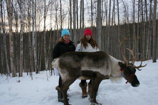 Running Reindeer Ranch : what fun!