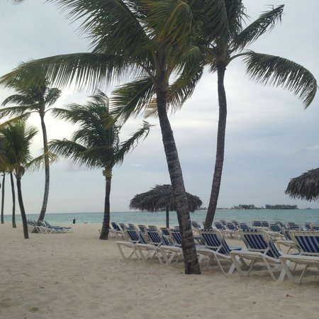 Melia Nassau Beach - All Inclusive : Another beachside shot