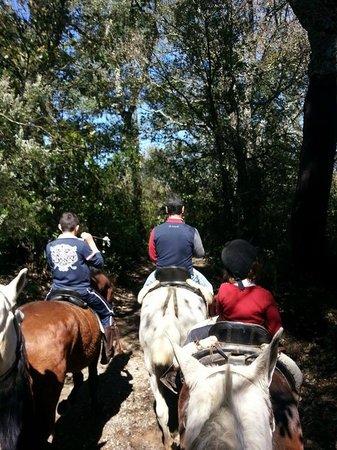 Finca la Suerte: Trail in Galaroza