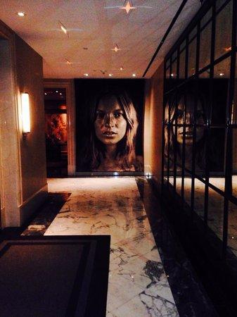 The Surrey: Hallway off Lobby