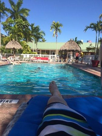 Floridian Hotel : Pool