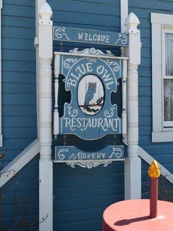 The Blue Owl: Famous!