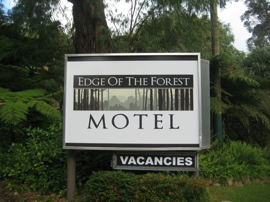 Welcome to Edge Of The Forest