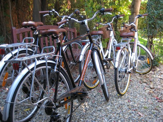 Finches of Beechworth: Complimentary Bicycles
