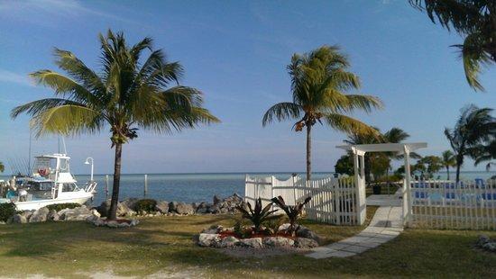 Seascape Motel and Marina : dock area