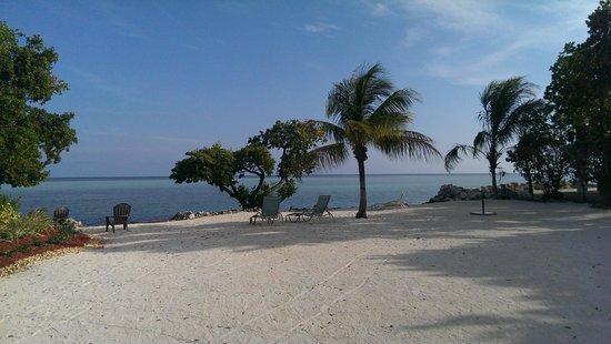 Seascape Motel and Marina : Beach