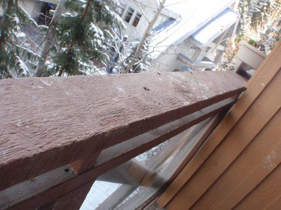 Marketplace Lodge: the balcony