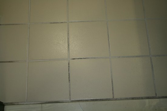 Country Inn & Suites By Carlson, Fresno North: Bathroom floor! Yuck