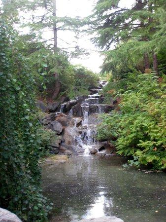 VanDusen Botanical Garden: VanDuzen Cascata