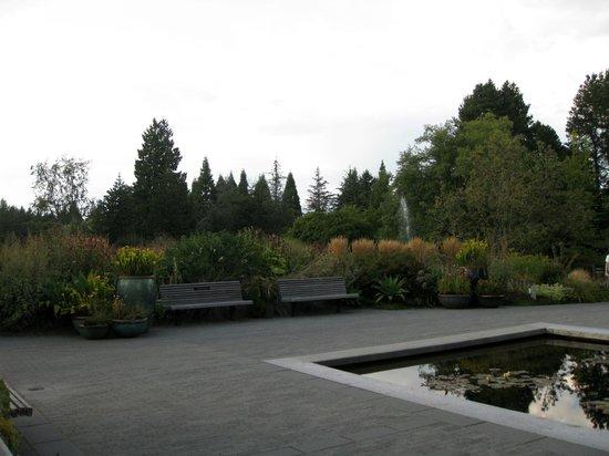 VanDusen Botanical Garden: VanDuzen Outono