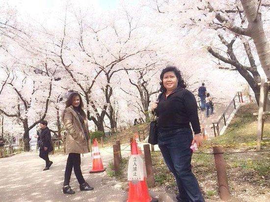 Sunroute Takadanobaba Hotel : convinient location