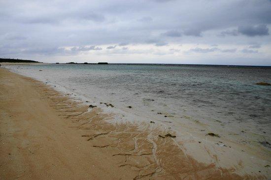 Nishihama Beach: 天気の悪い日のニシ浜(3月撮影)