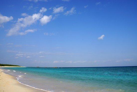 Nishihama Beach: 天気の良い日のニシ浜(3月撮影)