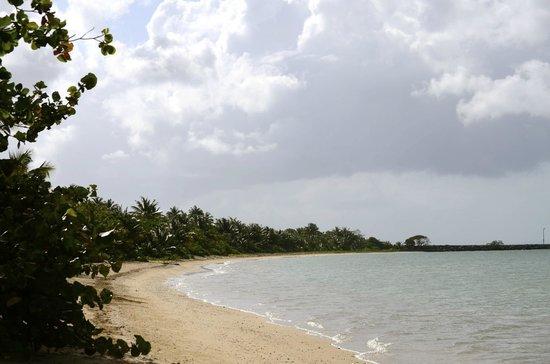 BEACH TO LEFT OF MOSQUITO PIER