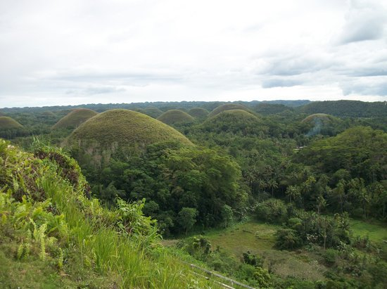 Summit Circle Cebu : Bohol Chocolate Hills