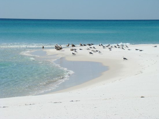 Navarra, FL: Gulf Island National Seashore