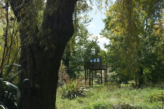 Katikati Bird Gardens : The tree house