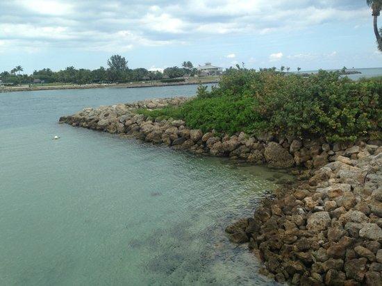 Dubois Park: Clear blue water; can spot various tropical fish.