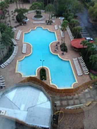 Rosen Centre Hotel: Piscina