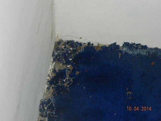 Hotel Sapphire Grand : Torn floor carpet