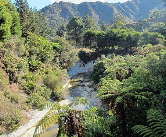 Whanganui River: The River