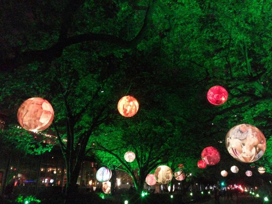 Discovery Green: Beauty of green ... <3