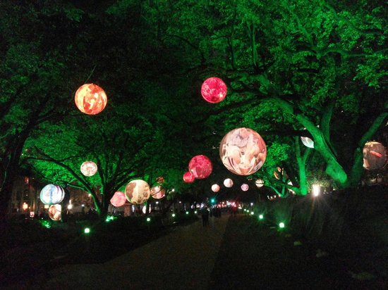Discovery Green: Beauty of green .. <3