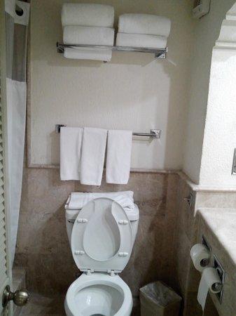 The Palms Resort Of Mazatlan: Baño limpio