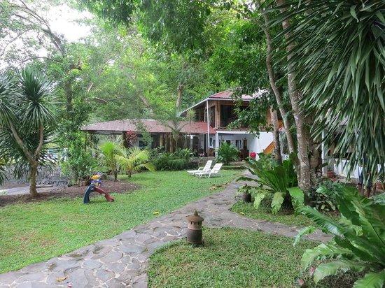 NAD-Lembeh Resort : View from my verandah