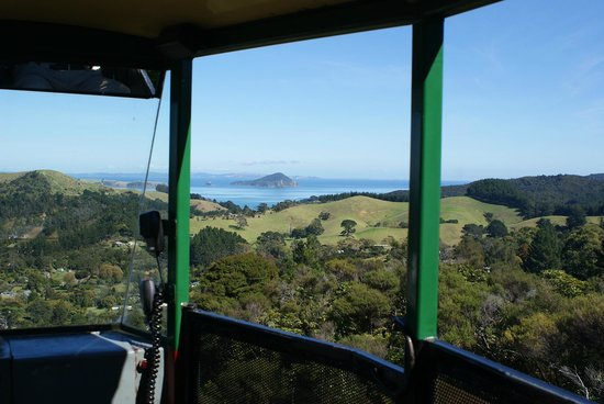 Driving Creek Railway and Potteries: View from the Rima siding