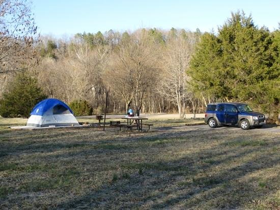 Marshall, AR: Nice tent pads at Tyler Bend campground