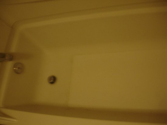 The Monroe Palm Springs: Bathtub needed to be recleaned or reglazed....not sure which one.