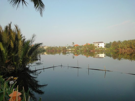 Riverside Garden Villas : View from the pool area