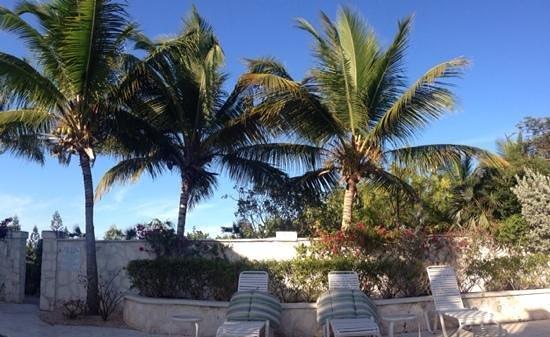 Atlantic Ocean Beach Villas: a view from our villa