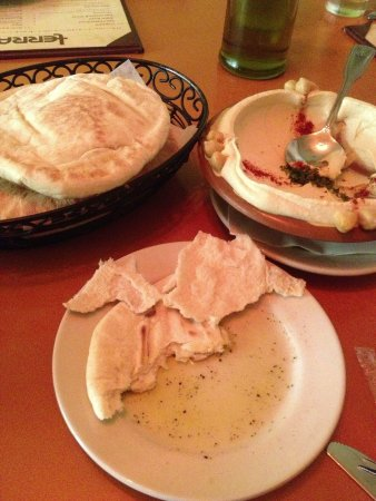 Terra Mediterranean: Complimentary pita bread, with ordered side of humus.
