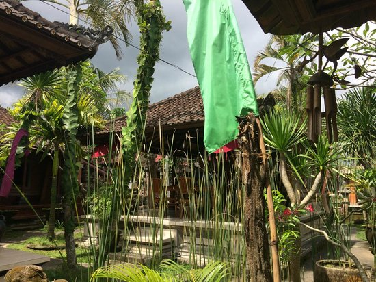 Pajar House Ubud: View from the porch